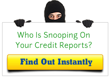 credit card theft stats